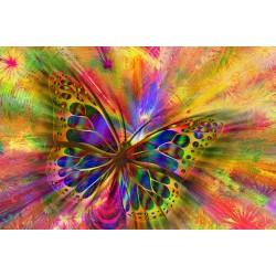 Картина - Абстрактна пеперуда